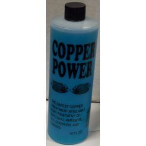 Copper Power bluee For Saltwater 4oz