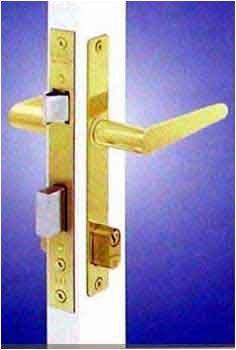 Papaiz Storm Door Lock