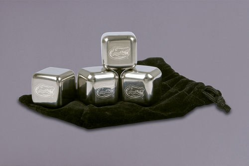 Collegiate Stainless Steel Ice Cubes (Florida)