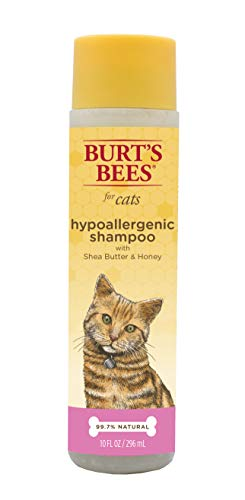 - Burt's Bees for Cats Hypoallergenic Shampoo with Shea Butter and Honey | Best Shampoo For All Cats and Kittens With Sensitive Skin