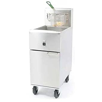 Oil Capacity Value Electric Fryer: Industrial & Scientific