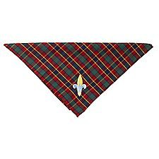 Webelos Scout Neckerchief and Slide