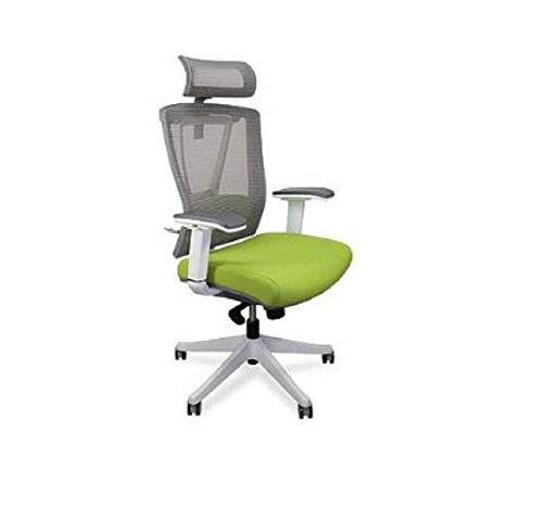 Autonomous Ergo Chair - Premium Ergonomic Office Chair - Green...