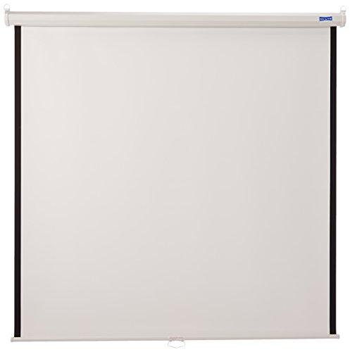 60X60 Model B Manual Screen Wall/ceiling Matte White