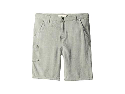 Kids Linen Shorts - Appaman Kids Baby Boy's Seaside Shorts