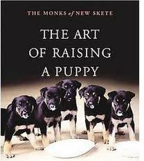 The Art of Raising a Puppy [Abridged, Audiobook] Publisher: HighBridge Company; Abridged; 4.25 on 4 CDs edition