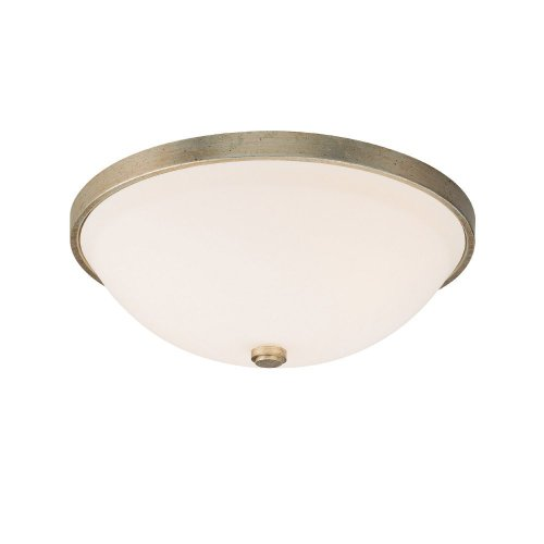 - Capital Lighting 2323WG-SW Ansley 2LT Flush Mount, Winter Gold Finish and Soft White Glass Shade