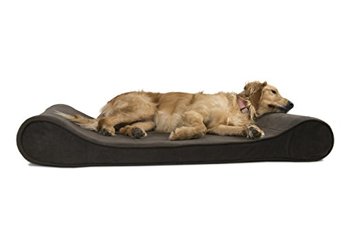 Furhaven Pet Dog Bed | Orthopedic Microvelvet Luxe Lounger P