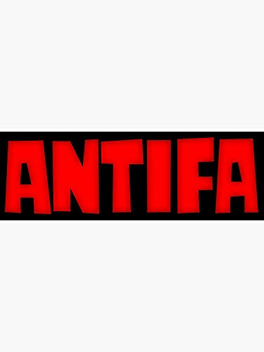 Antifa Anti Fascist Sticker - Sticker Graphic - Political Funny Bumper  Sticker for Cars Windows Trucks