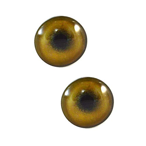 (30mm Light Brown Tan Lion Glass Eyes Realistic Pair for Art Dolls, Sculptures, Props, Masks, Fursuits, Jewelry Making, Taxidermy, and More)