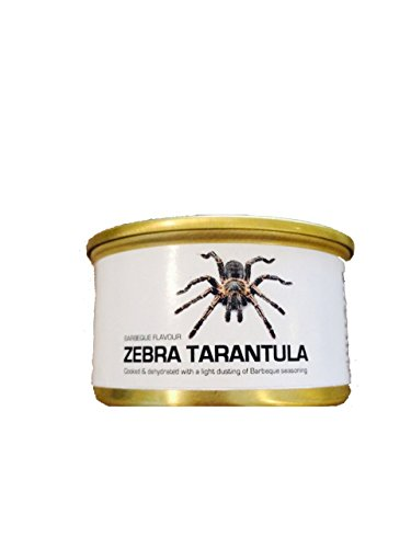 - Edible Dehydrated Zebra Tarantula