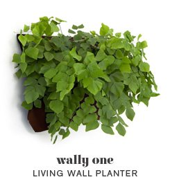 Living Wall Planter INDOOR/OUTDOOR USE w/Reservoir  (Color: Chocolate) Vertical Garden (Modular, Sustainable, Eco, Green) Hanging Planter by Wallygro