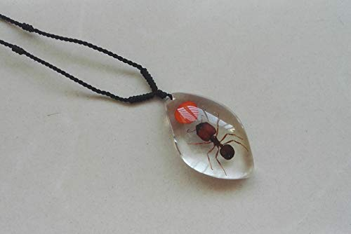 artificial man made crystal necklace pendant chain amber specimens insects ants corner spider jewelry gifts (202 ant red beans ()