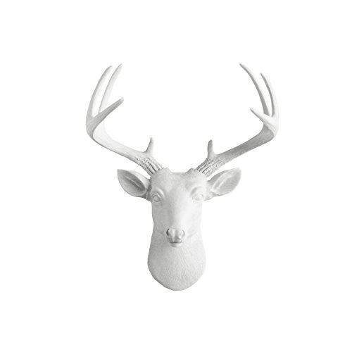 Wall Charmers Taxidermy Sculpture Fauxidermy product image