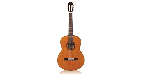 Cordoba C7 CD cuerdas de nailon acústica guitarra clásica: Amazon.es ...