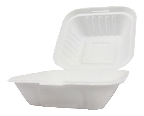 Clamshell Hinged Box Containers To Go Take Out Food Restaurant Case Disposable Boxes 6x6 100 (Takeout Boxes)
