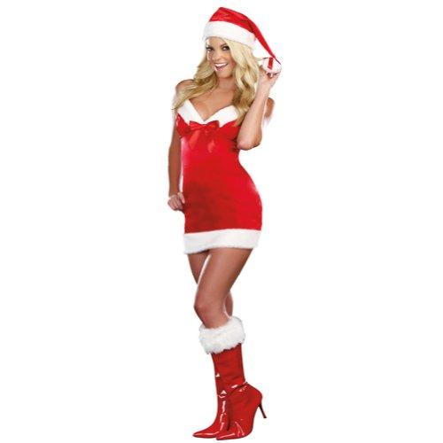 [Under The Mistletoe Costume - Medium - Dress Size 6-10] (Under The Mistle Toe Costumes)