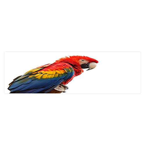 Leighhome Aquarium Decorative Colourful Parrots Aquarium Background Sticker Wallpaper L29.5 x H19.6