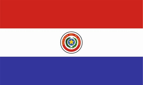 Paraguay Flag Colors - 6