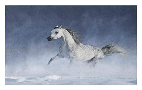 Lunarable Arabian Doormat, Arabian Horse Galloping During a Snowstorm Stallion Winter Snow View Equine Print, Decorative Polyester Floor Mat Non-Skid Backing, 30 W X 18 L inches, Night Blue by Lunarable