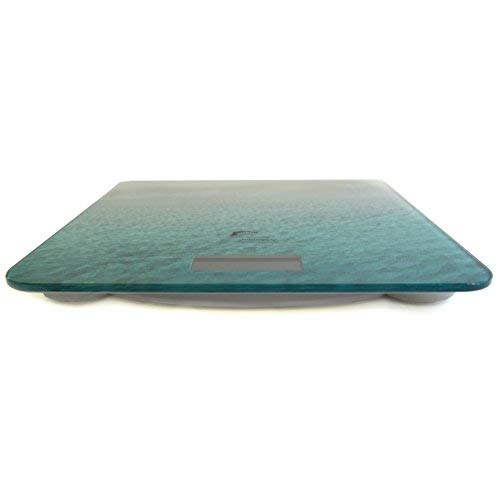 Fresh Studio Body Weight Scale Includes Battery Spare! and Modern Designer Tempered Lbs