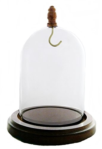 Pocket Watch Glass Display Dome with Hook, Walnut Base & knob - Pocket Watch Display Cases