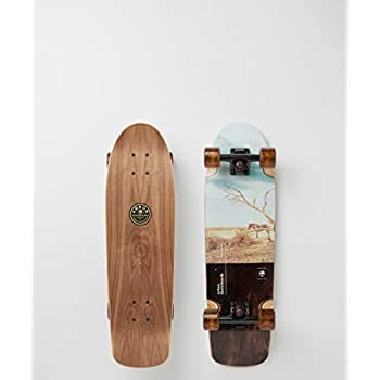Image of Arbor 29' Cruiser Skateboard - Pilsner Photo Standard Skateboards