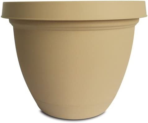 Akro-Mils Infinity Planter with Attached Saucer, 14-Inch, Sandstone