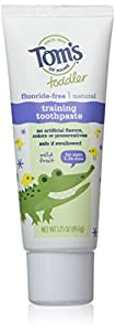 Tom's of Maine Natural Fluoride Free Children's Training Toothpaste, Mild Fruit Flavor, 1.75 Ounce