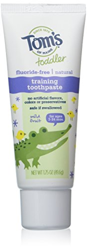 - Tom's Of Maine Natural Toddler Training Fluoride Free Toothpaste Mild Fruit, 1.75 Ounce