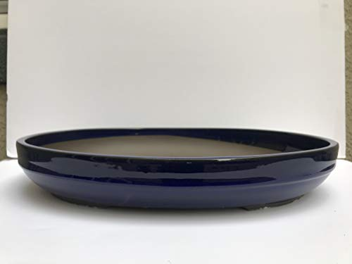 Kotobuki Japanese Glazed 18