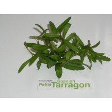 Petite Greens -Tarragon Spanish - 4 x 8 oz