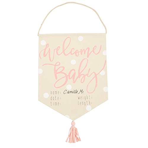 Mud Pie Welcome Baby Girl Pennant Banner Announcement