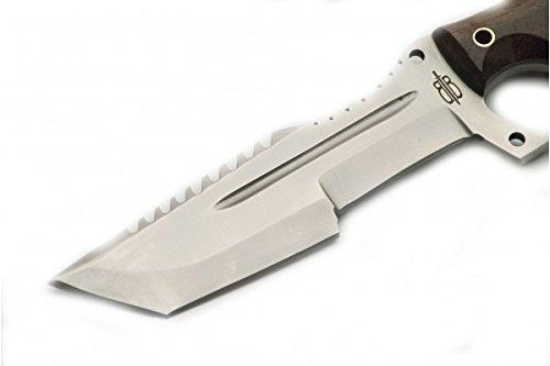 Buck n Bear Custom Handmade Damascus Tanto Tracker Fixed Blade Knife (Walnut Wood Handle) by Buck n Bear (Image #2)