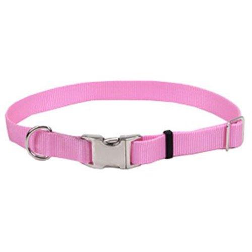 Coastal Pet 61901 A PKB26 Dog Collar, 3/4-Inch, Pink
