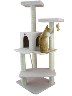 Armarkat B5701 57-Inch Cat Tree, Ivory (Maine Coon Cats For Sale In Maine)