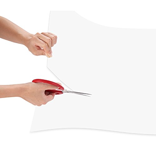 Framemaster Flexible Plastic Sheet 24x36 Inch 1 Pack 0