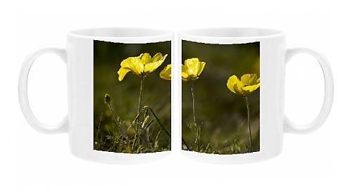 Photo Mug of Turban buttercups, yellow form