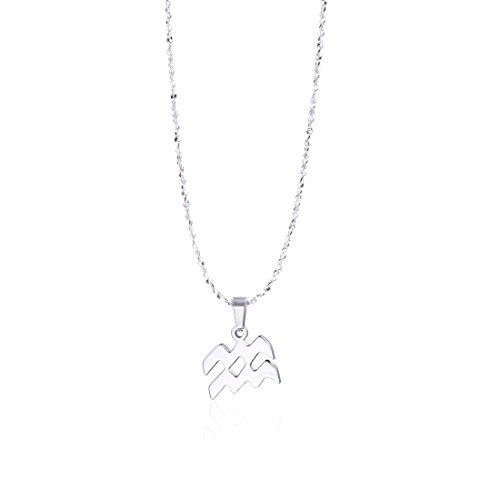 (Aquarius Zodiac Necklace Star Sign Astrology Necklace Birthday Gift for Her (Aquarius))