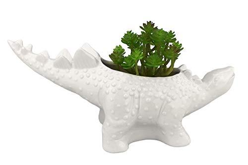 VanEnjoy 12 inches Cute Cartoon Dinosaur Ceramic Succulent Planter, Water Culture Hydroponics Bonsai Cactus Flower Pot,Air Plant Vase Holder Desktop Decorative Organizer (Stegosaurus, White)