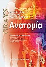 anatomia /