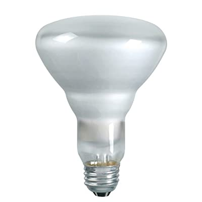 Philips 139279 Soft White 65-Watt BR40 Indoor Flood Light Bulb, 2-Pack