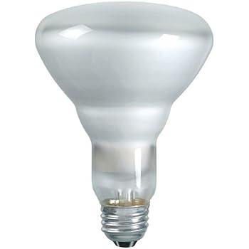 Philips 139279 Soft White 65-Watt BR40 Indoor Flood Light Bulb, 2 ...