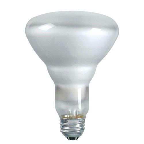 046677139278 - Philips 139279 Soft White 65-Watt BR40 Indoor Flood Light Bulb, 2-Pack carousel main 0
