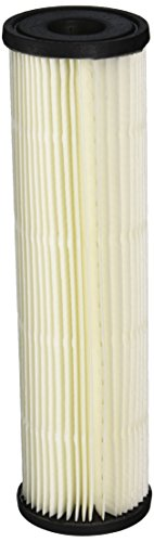 Pentek S1 Lot House Filter, Replacement Cartridge