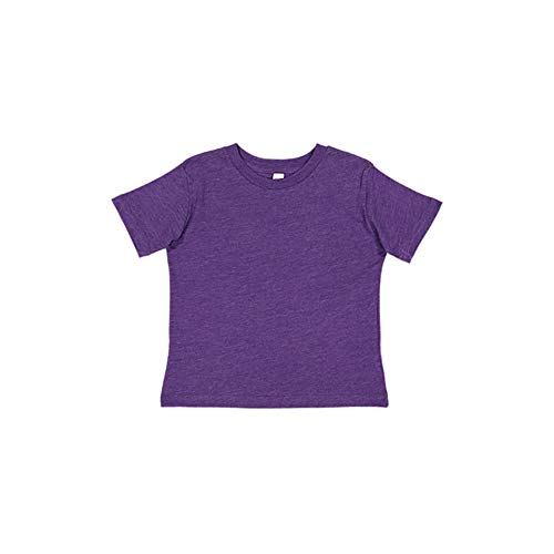 (Rabbit Skins RS 3321 Toddler SS Jersey TEE, Vintage Purple, 3T)