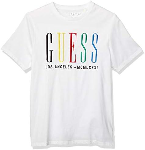 Tシャツ SS BSC G MLTICLR EMB CREW TEE メンズ