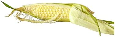Corn White Conventional, 1 Each