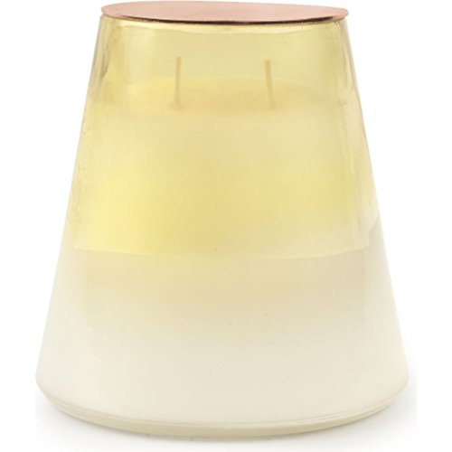 (Paddywax Celestial Collection Scented Soy Wax Jar Candle, 18-Ounce, Rose &)