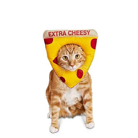 Bootique Cheezy Pizza Cat Costume Extra Cheesy OSFM Halloween Pepperoni Petco